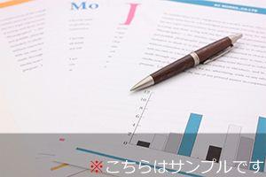 アクセス解析レポートのサンプル